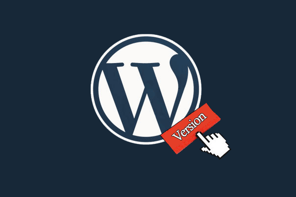 How to remove WordPress version number?