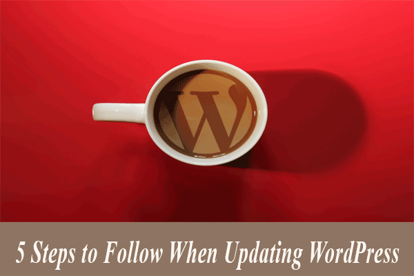 5 Steps to Follow When Updating WordPress
