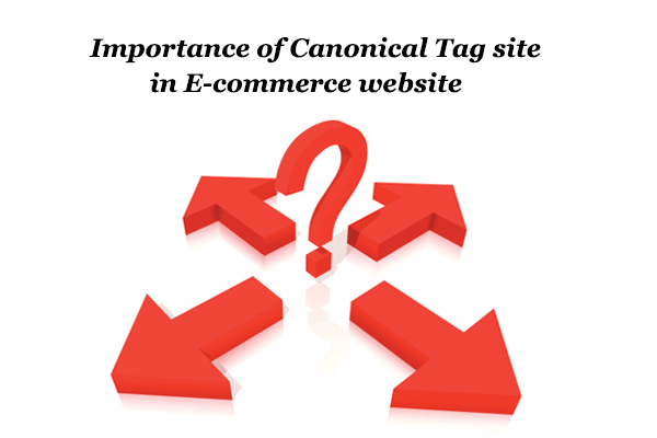 Importance of Canonical Tag in E-commerce website